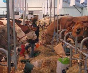 Foire de Dijon : La ferme de Côte-d'Or pour vivre l'agriculture «en vrai»